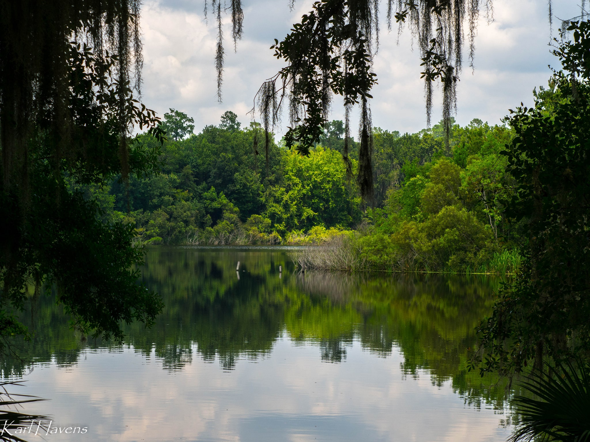 """Havens Lake Alice Zeiss Tessarr"" Florida Sea Grant CC BY-NC-ND 2.0 https://goo.gl/6Cg2S6"